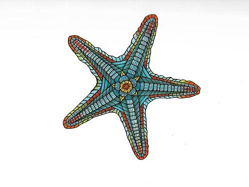 Starfish #1