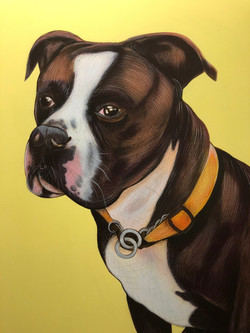 Dog Painting Commission on Canvas