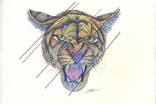 Florida Panther #1