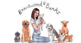 Brentwood Barks Dogs