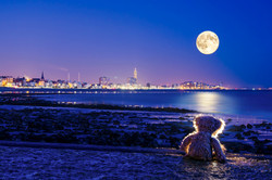 Looking at the moon - Le Havre