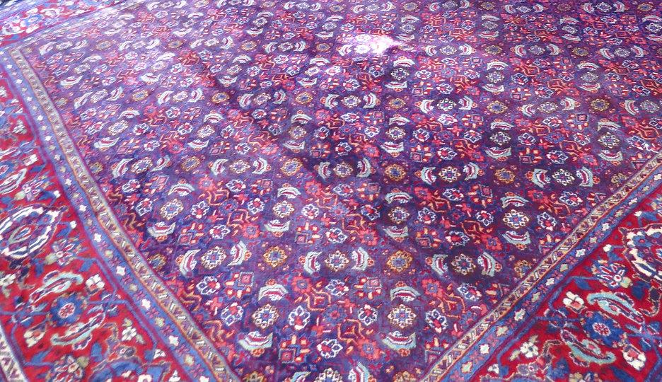 Bidjar_Persian_Rug_8x10_edited.jpg