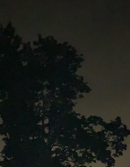 """Edge of Night"""