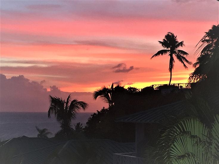 """Paradise Sunset, St. Kitts"""