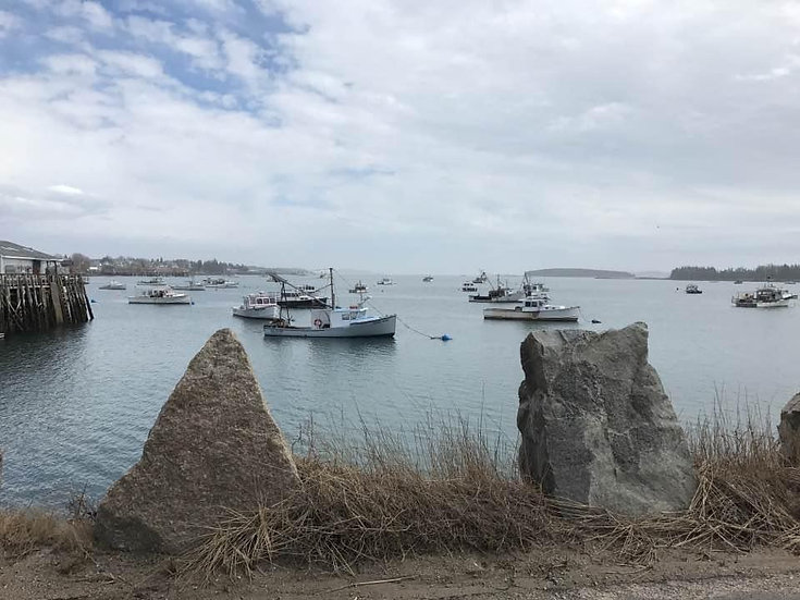 """Lobster Fleet, Beals Island, Maine"""