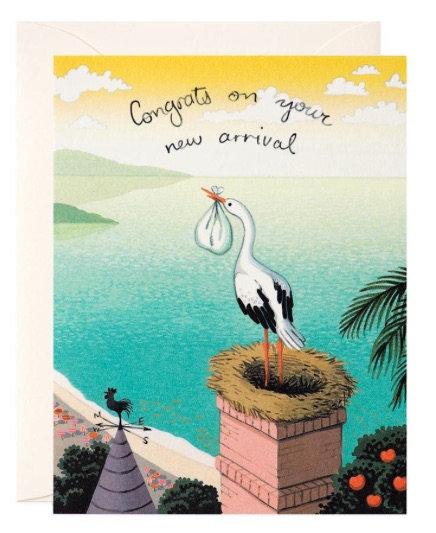 Stork New Arrival