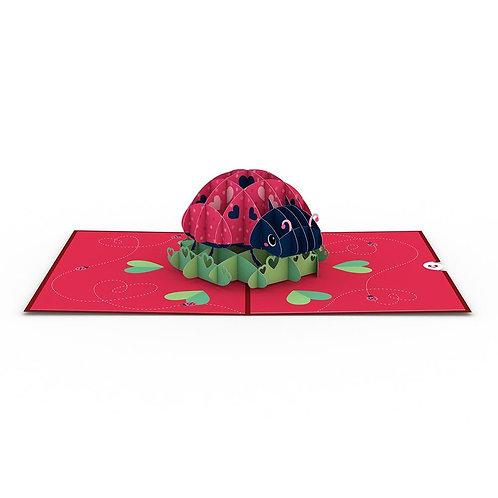 Love Bug 3D Card