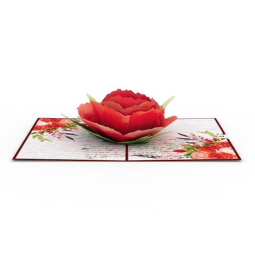 Love Rose Bloom 3D Card