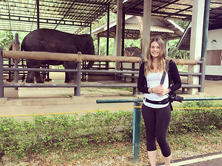 samantha sendor chiang mai thailand elephant hospital