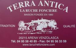 Logo Terra Antica