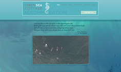 EXAMPLE PAGES LEBEN SITE.png