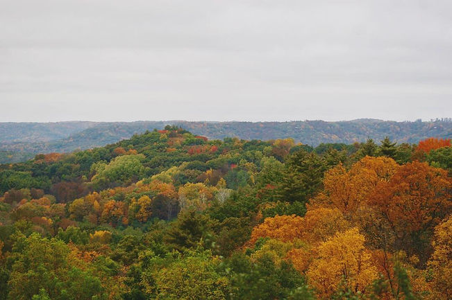 Fall colors in the Driftless Region