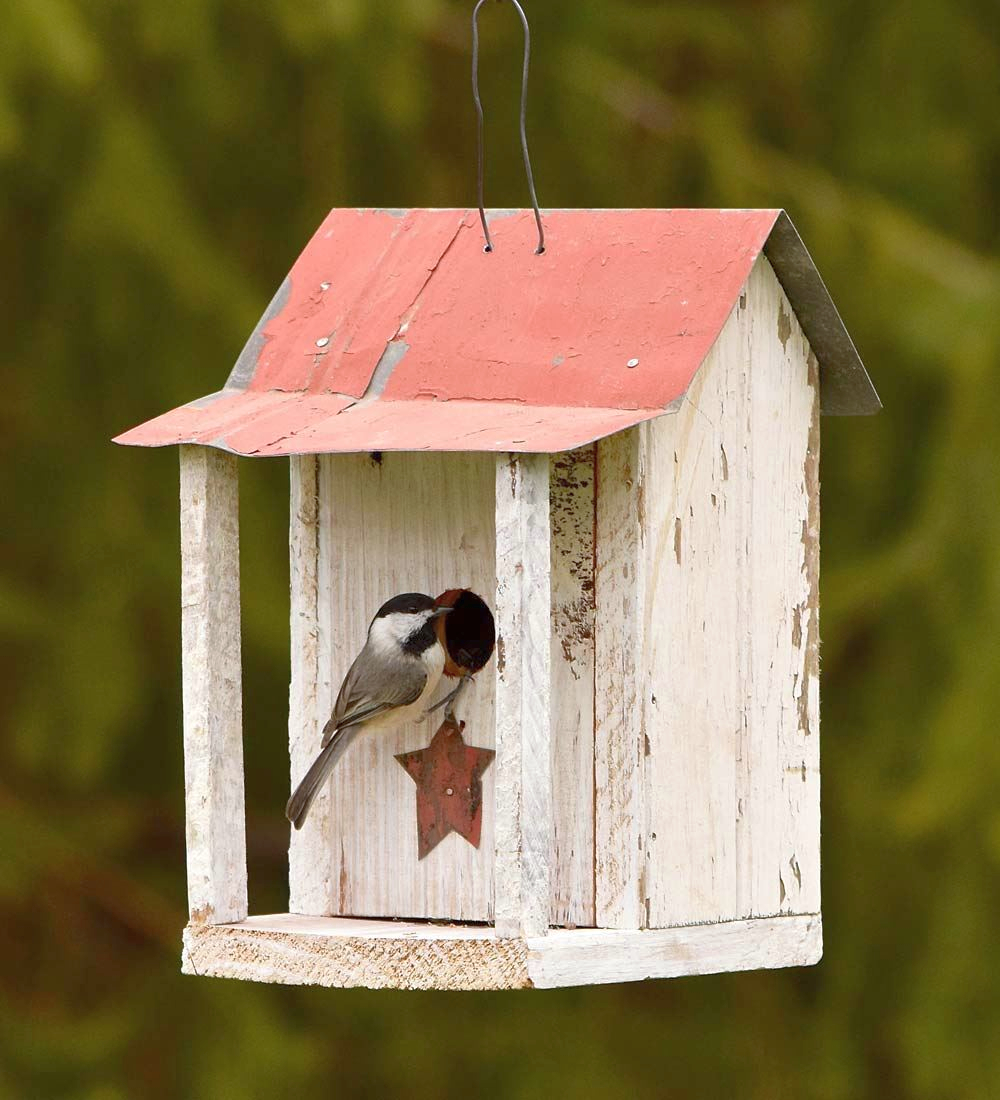 Shack Bird House