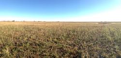 LPF Site 2 - Mahnomen Wetland Restoration Work, Fall 2014 (4).jpg