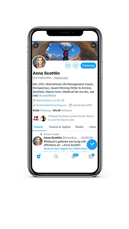 iPhone Twitter ANNE.png
