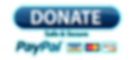 Paypal donation.png