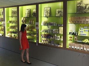 plante, visite, groupe, residence***, La Fontaine d'annibal, buis les baronnies, drome provencale