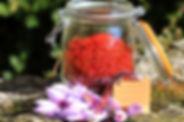 safran, ventou, provence, visite,  baronnies, plantes, residence***, camping***, buis, drome, provencale