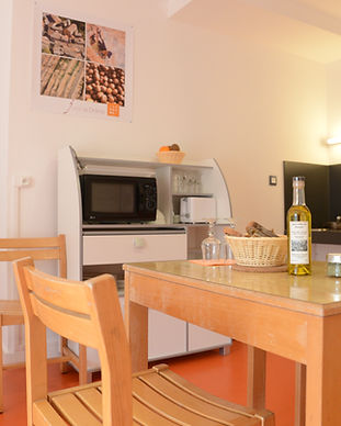 location, appartement, residence***, la fontaine annibal, Buis les Baronnies, drome, provence