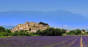 grignan, lavande, sejour, culture, residence***, La Fontaine d'Annibal, Buis les Baronnies, drome provence