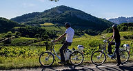 velo electrique, partenaire, veleco, baronnies, residence***, fontaine annibal, drome, provence