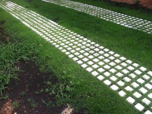 Soil Retention Drivable Driveways