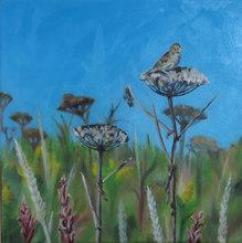 Sparrow on Pushki
