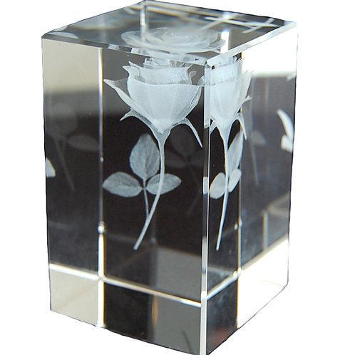 2D Sub-Surface Engraved Crystal