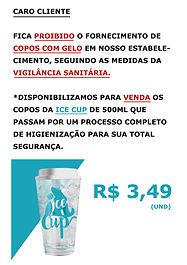 Placa_Padrao_PDV.jpg