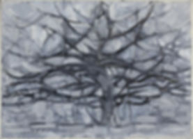 Piet_Mondrian,_1911,_Gray_Tree_(De_grijz