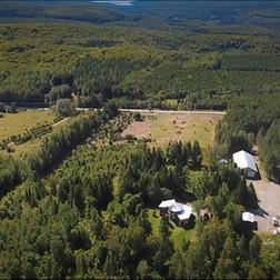 Domaine vert forêt20.jpg