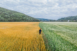 Paysage de Nature Highland, photographié par l'Agence Ambassade, vidéaste à Rimouski