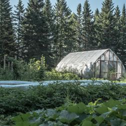 Domaine Vert Forêt-70.jpg