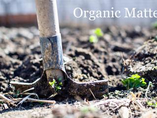Garden Resolutions: No. 2 Organic Matter