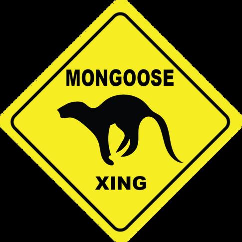 Mongoose Crossing