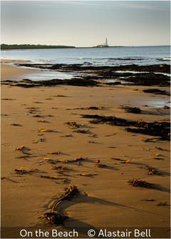 Alastair Bell_On the Beach.jpg