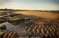 Alastair Bell_Rippling Sands.jpg