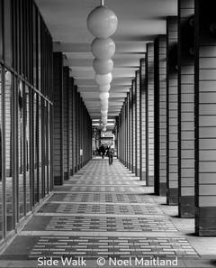 Noel Maitland_Side Walk.jpg