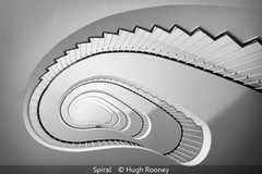 Hugh Rooney_Spiral-1.jpg