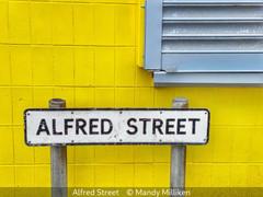 Mandy Milliken_Alfred Street.jpg