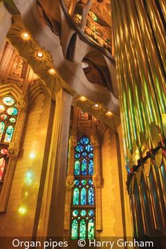 Harry Graham_Organ pipes.jpg