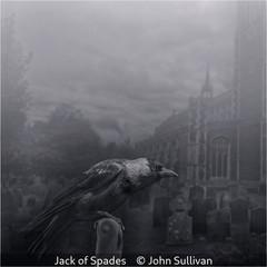 John Sullivan_Jack of Spades.jpg