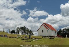 Noel Maitland_White Church.jpg