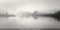 Judith Kimber_Harbour in the Mist.jpg