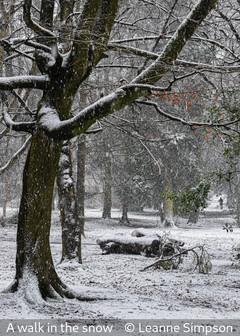 Leanne Simpson_A walk in the snow.jpg