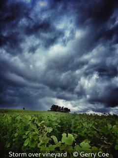 Gerry Coe_Storm over vineyard.jpg