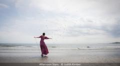 Judith Kimber_Afternoon Stars.jpg