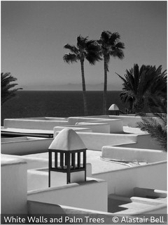 Alastair Bell - White Walls and Palm Trees