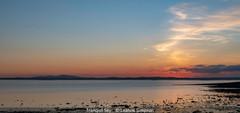 Leanne Simpson_Tranquil Sky.jpg