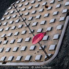 John Sullivan_Manhole.jpg